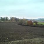Úprava terénu, pastviny - ještě bez tvrze 2007