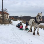Jezdecký oddíl a zimní zábava