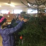 Vánoce ve stáji (1)
