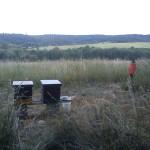 Naše první dva úly