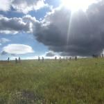 Jezdecký tábor 2018 (6)
