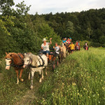Letní jezdecký tábor 2017 (12)