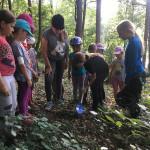 Letní jezdecký tábor 2017 (45)