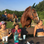 Letní jezdecký tábor 2017 (46)
