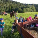 Letní jezdecký tábor 2017 (48)