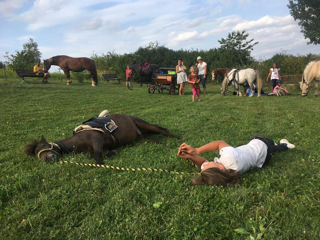 Letní jezdecký tábor 2017 (9)